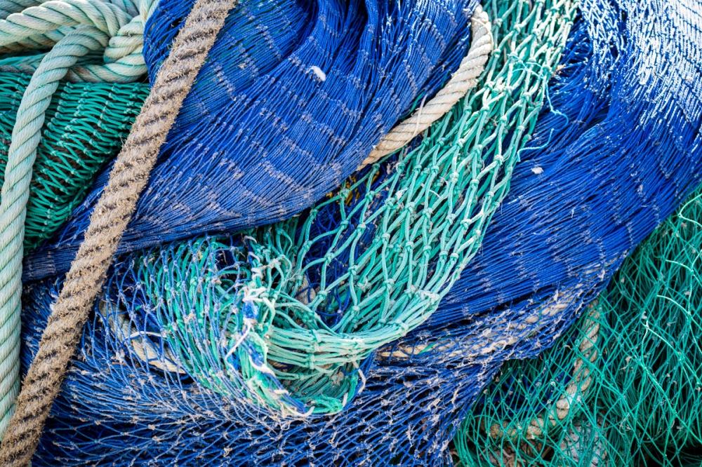 Blue sea AMR